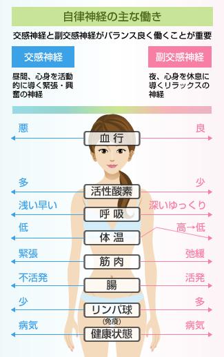 女性の体の健康と不健康の図